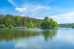 The green Island in pond Stock Images