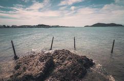 Green island and sea nature landscape vintage Royalty Free Stock Images