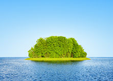 Green island. Among the water Royalty Free Stock Image