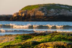 Green Islands, Golden Hour. Royalty Free Stock Images