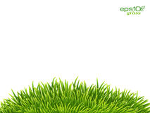 Green isolated grass hill on white background Stock Photography