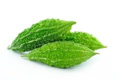 Green ittergourd Stock Photography