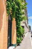 Green Ivy: Historic Fremantle Stock Photo