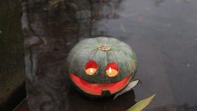 Green jack-o-lantern in the water stock footage
