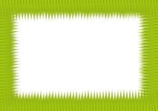 Green jackfruit leaf Royalty Free Stock Images