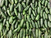 Green Jalapeno mixed in the box. Spicy Green Jalapeno mixed in the box. Frechfrom the farm royalty free stock photo