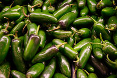Green Jalopeno peppers Royalty Free Stock Image