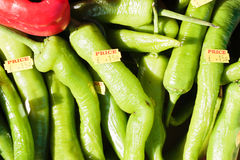 Green jalpeno peppers Stock Image