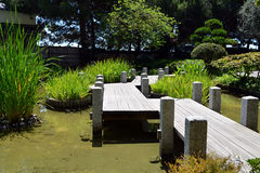 Green japan garden with wooden bridge photo Stock Photo