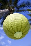 Green japanese lantern hanging from a palm tree Stock Photography