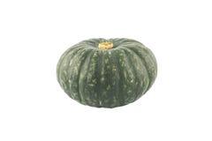 Green Japanese Pumpkin royalty free stock image