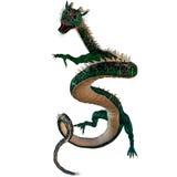 Green Jewel Dragon Stock Images