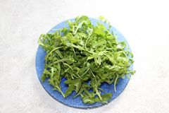 Green juicy arugula salad on a beautiful blue plate. Juicy greens of arugula salad on a white background and a beautiful plate excites appetite and lightness stock images