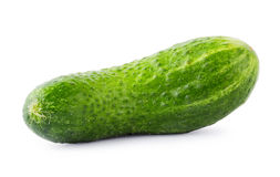 Green juicy cucumber Royalty Free Stock Image