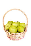Green jujube Royalty Free Stock Image