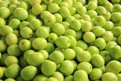 Green jujube fruit Royalty Free Stock Photos