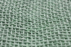 Green jute Stock Image