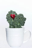 Green kale Royalty Free Stock Image