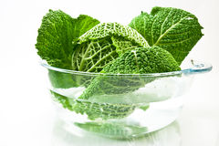 Green kale Stock Photo