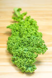 Green kale Royalty Free Stock Photos