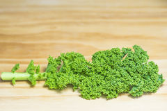 Green kale Royalty Free Stock Images