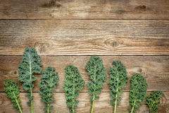 Green kale leaves on wood Royalty Free Stock Photography