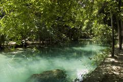 Green Kawasan river and foliage Stock Photo