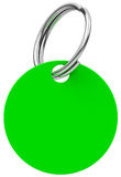 The green keychain Stock Image