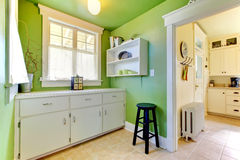 Green kitchen and garden room interior Royalty Free Stock Photos