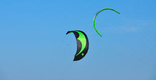 Green kites  Stock Photos