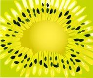 Green kiwi background illustration Royalty Free Stock Image