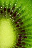 Green Kiwi Fruit Stock Photography