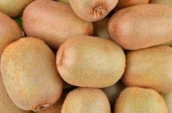 Green kiwi fruit Actinidia deliciosa. Close up shot Stock Images