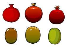 Green kiwi and pomegranates fruits Stock Photos