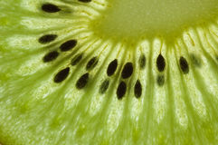 Green kiwi slice Stock Photo