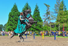 Green knight on a horse Royalty Free Stock Photography