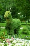 green kozy obraz royalty free