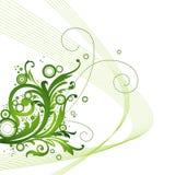 green kwiecista tło ilustracji