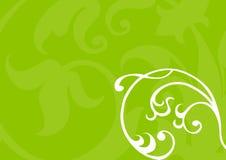 green kwiecista tło Zdjęcie Royalty Free