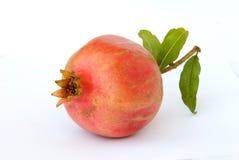 green låter vara pomegranates mogna Royaltyfri Bild