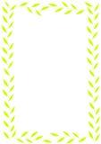 Green låter vara ramen Arkivbild
