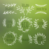 Green Labels Set. Green Vector Handdrawn Eco, Organic, Vegan, Farm Fresh, Natural Labels Set Royalty Free Stock Photos