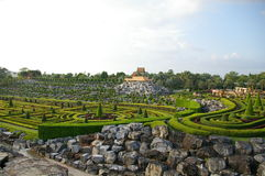 Green labirint in Nong Nooch Garden in Pattaya, Thailand. Labirint of grass and stones in Siam royalty free stock images
