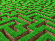 Green labyrinth Royalty Free Stock Photos