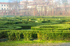 Green labyrinth Royalty Free Stock Images