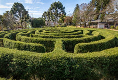 Green Labyrinth Hedge Maze & x28;Labirinto Verde& x29; at Main Square - Nova Petropolis, Rio Grande do Sul, Brazil Royalty Free Stock Photography