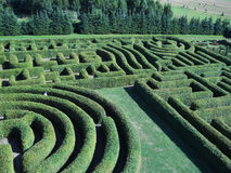 Green labyrinth. Park with beautiful trees and flower in Hortulus Gardens, Dobrzyca, Poland Stock Photos