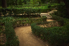 Green labyrinth in a park royalty free stock photo