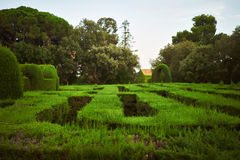 Green labyrinth in a park Stock Photos