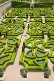 Green labyrinth Royalty Free Stock Image